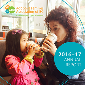 2017 AFABC Annual Report