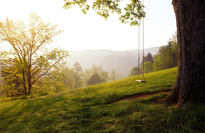 empty swing in field